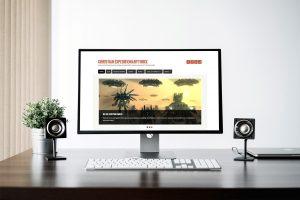 DIY Web Design vs. Professional Web Designer